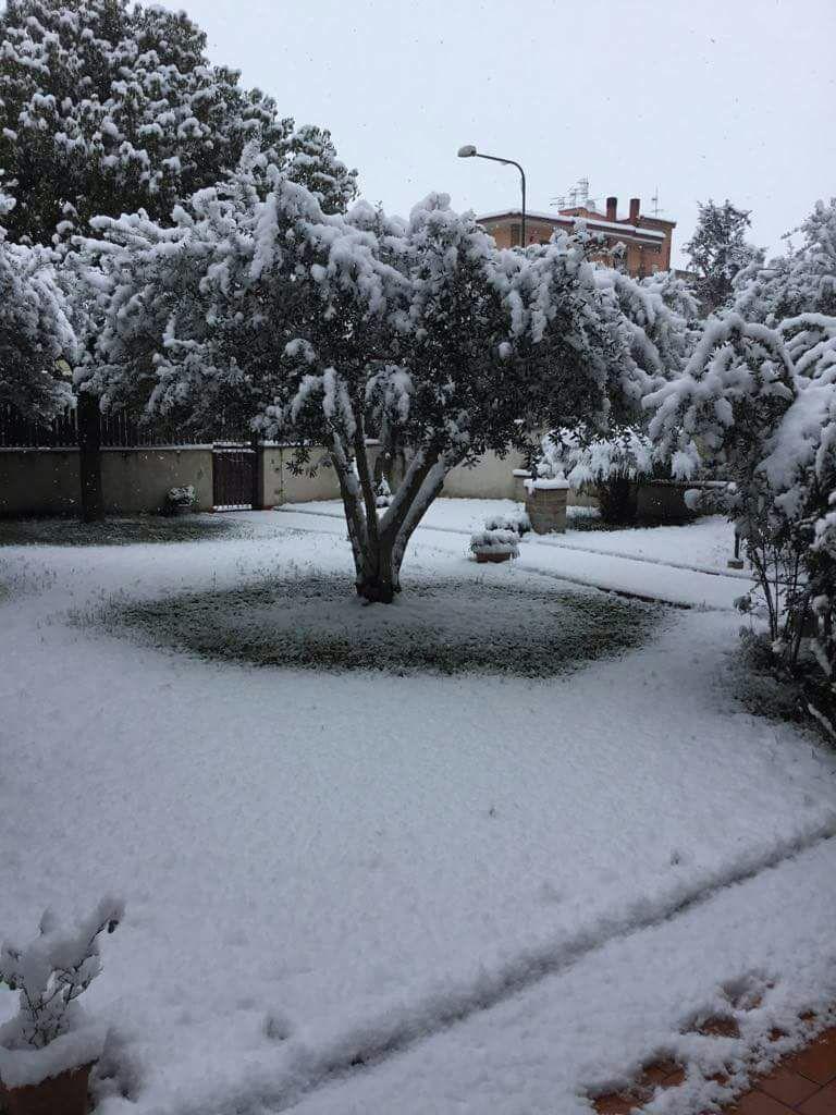 Quel che resta della neve