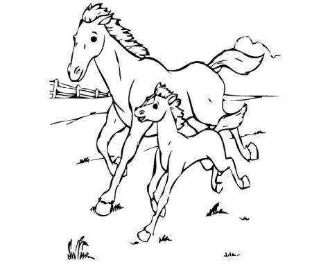 Disegni animali della fattoria da colorare for Cavalli da colorare per bambini