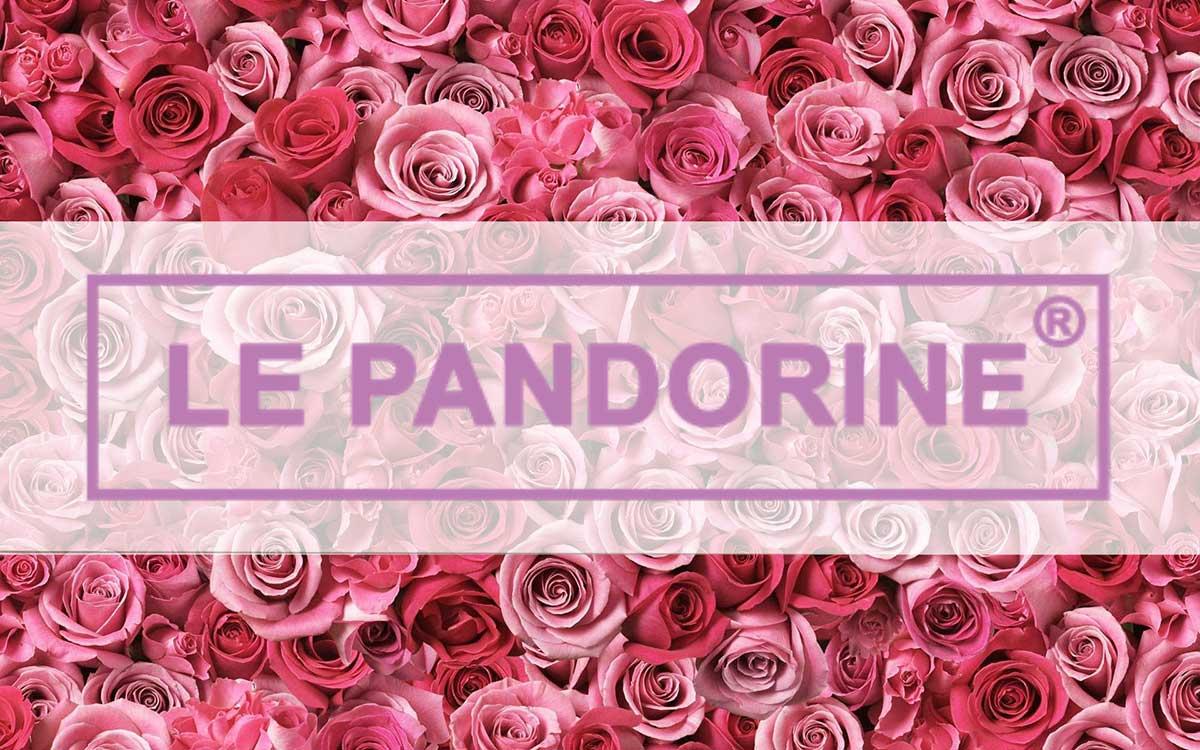 8593902000 Borse Le Pandorine scontate dal 10% al 50% su Amazon