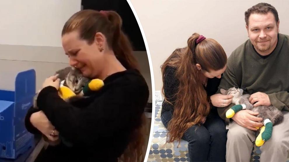Incendi in California, ritrova il suo gatto perso tra le fiamme: l'incontro fa commuovere il mondo