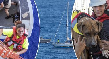 Alla deriva per cinque mesi nell'oceano, due donne e i loro cani vengono salvati così