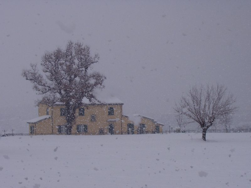 la neve negata