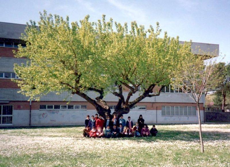 scuola all'aperto: che bella idea!