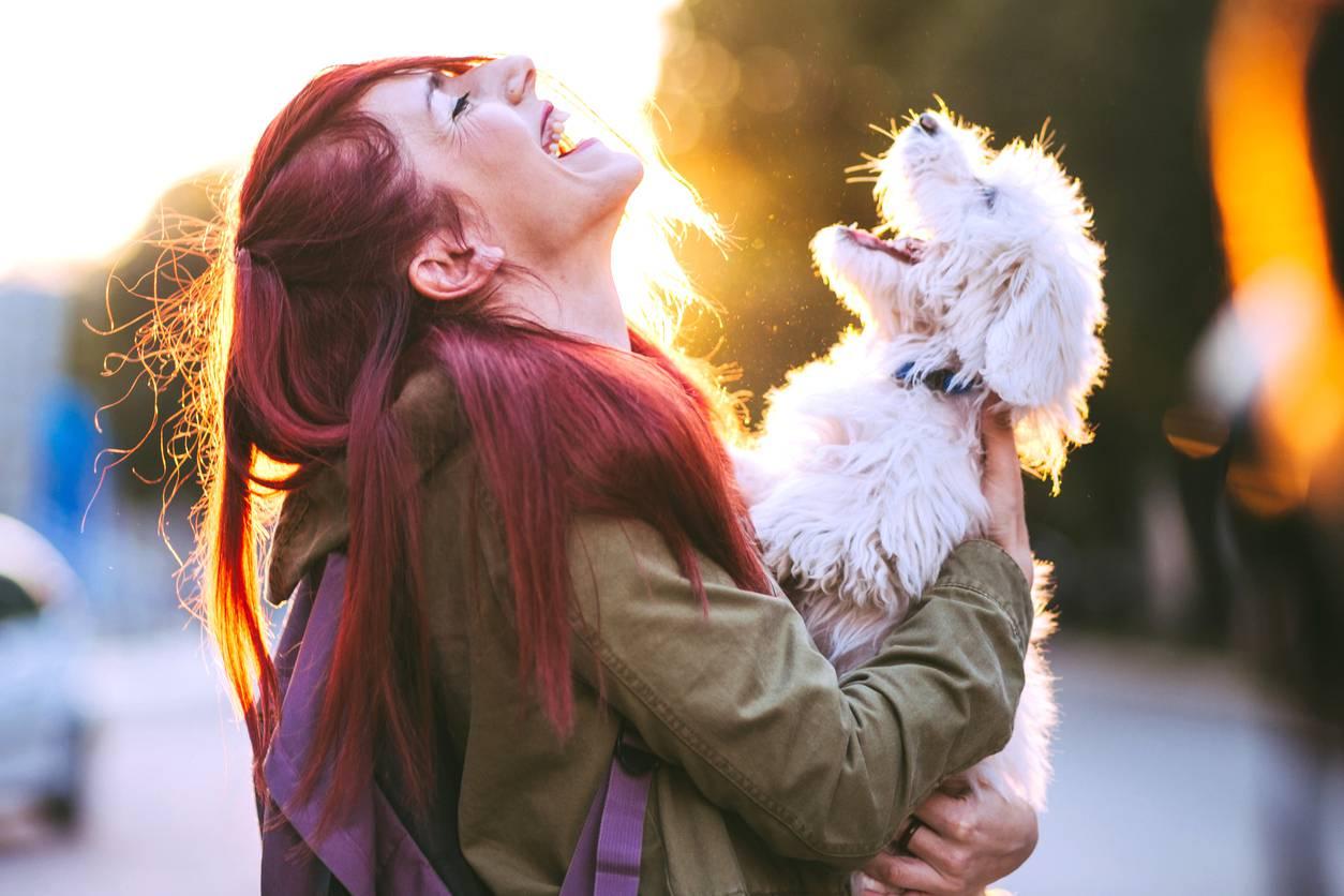 I cani fanno bene al cuore e allungano la vita: il segreto è seguire le loro attività