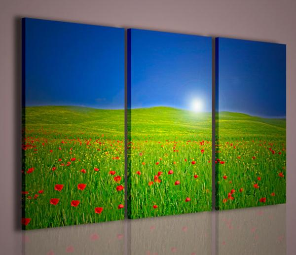 Quadri moderni quadri di natura e paesaggi light tulip for Quadri e quadri