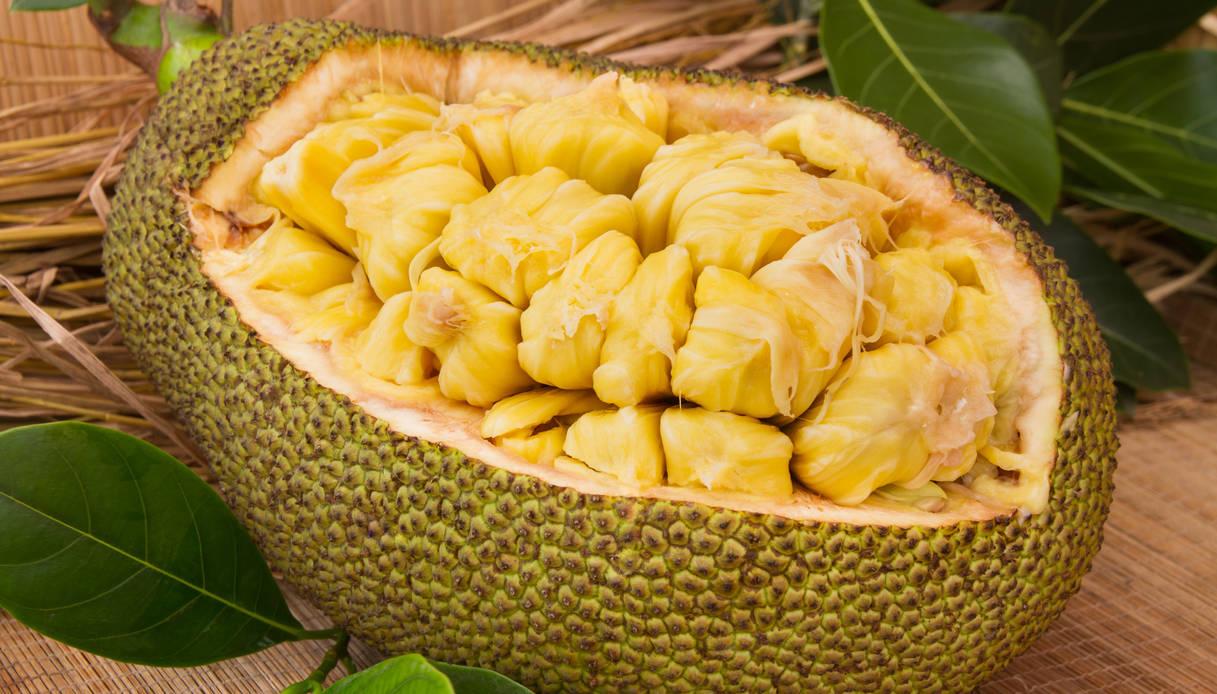 Giaca, il frutto che sa di carne. Utilizzo e proprietà del frutto che può salvare le aree povere