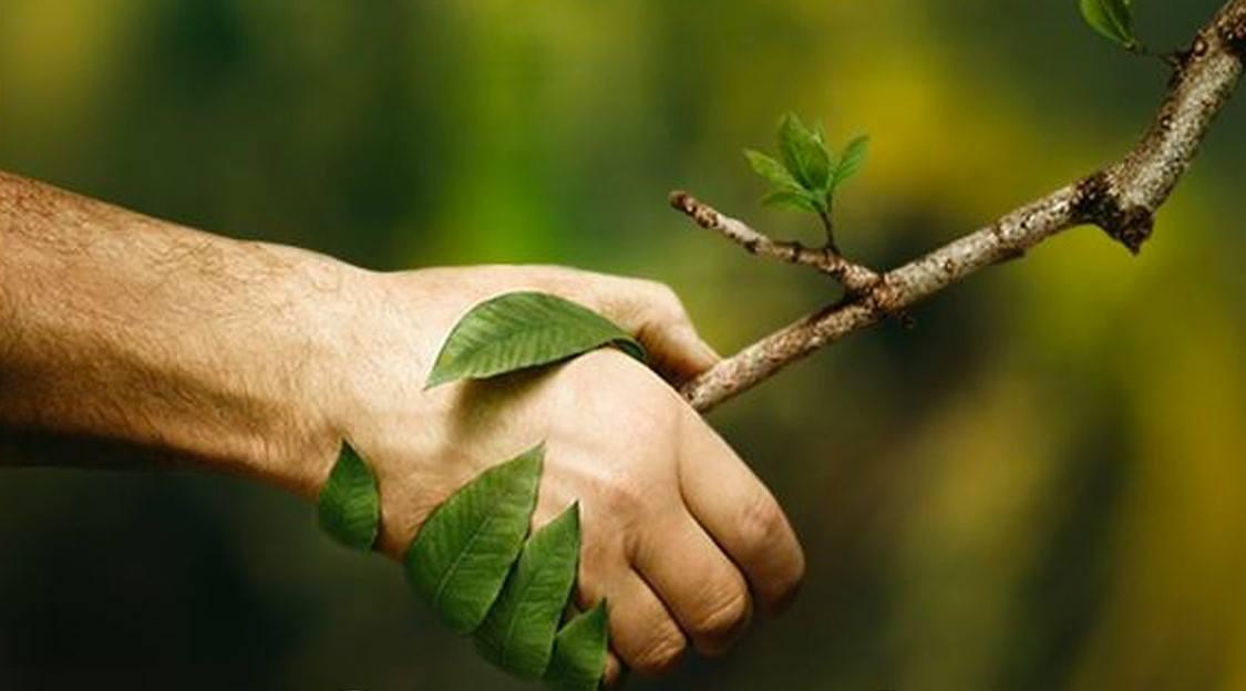Giornata mondiale dell'ambiente 2020, per una Terra diversa