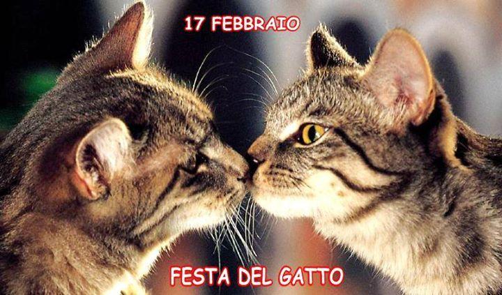 FESTA DEL GATTO – FILM, INCONTRI E DJ SET - Mercoledì 17 febbraio