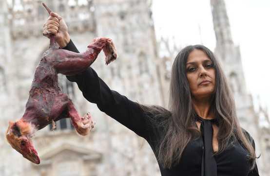 Rosita Celentano a Milano in mano con una volpe scuoiata protesta contro le pellicce
