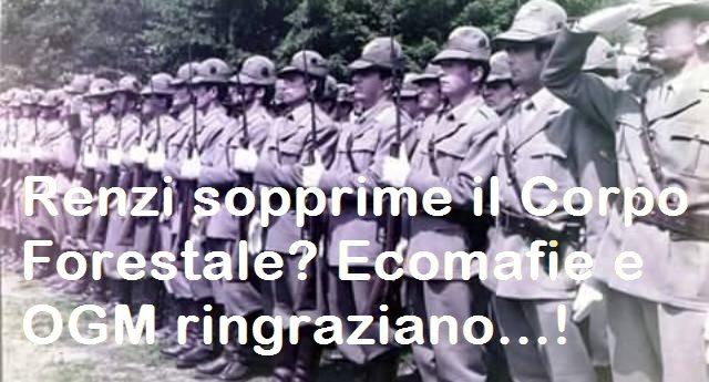 """L'Italia va a fuoco? Per rinfrescarVi la memoria, ecco la Lettera aperta a Renzi dal Comandante Regionale Umbria del Corpo Forestale: """"Renzi sopprime il Corpo Forestale? Ecomafie e OGM ringraziano""""...!"""