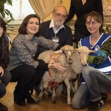"""Pastore sardo scrive alla Boldrini per gli agnellini """"salvati"""""""