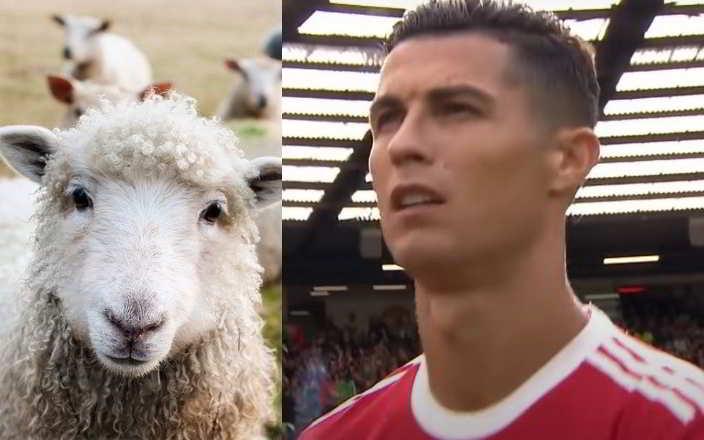 Cristiano Ronaldo costretto a traslocare per colpa delle pecore