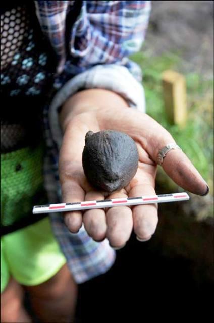 Trovato un sonaglio per bambini di 4000 anni fa