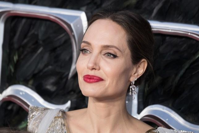 Coronavirus, dalla Jolie a Schwarzenegger le star fanno donazioni... da milioni di dollari