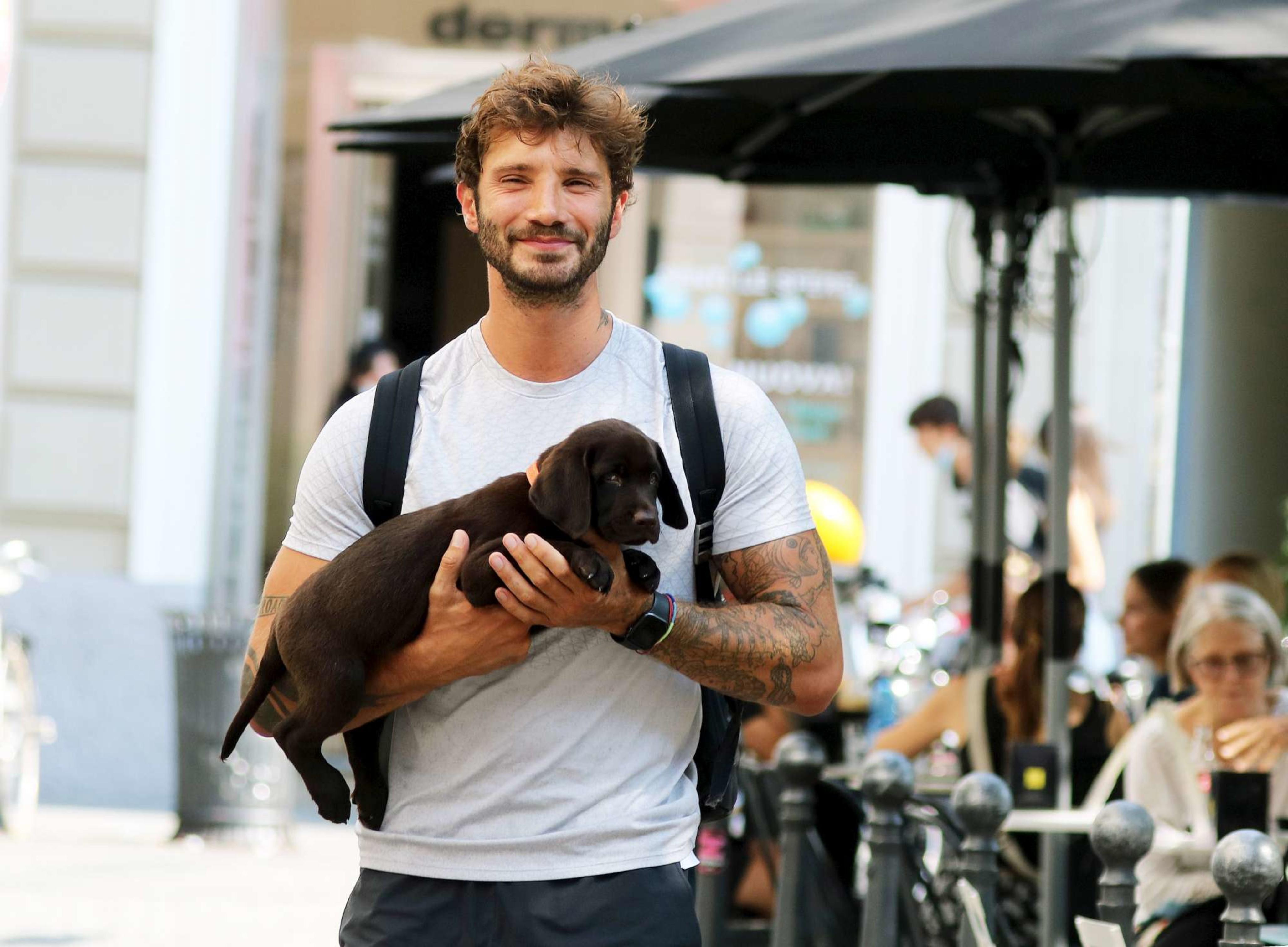 Stefano De Martino ha comprato un cagnolino per Santiago