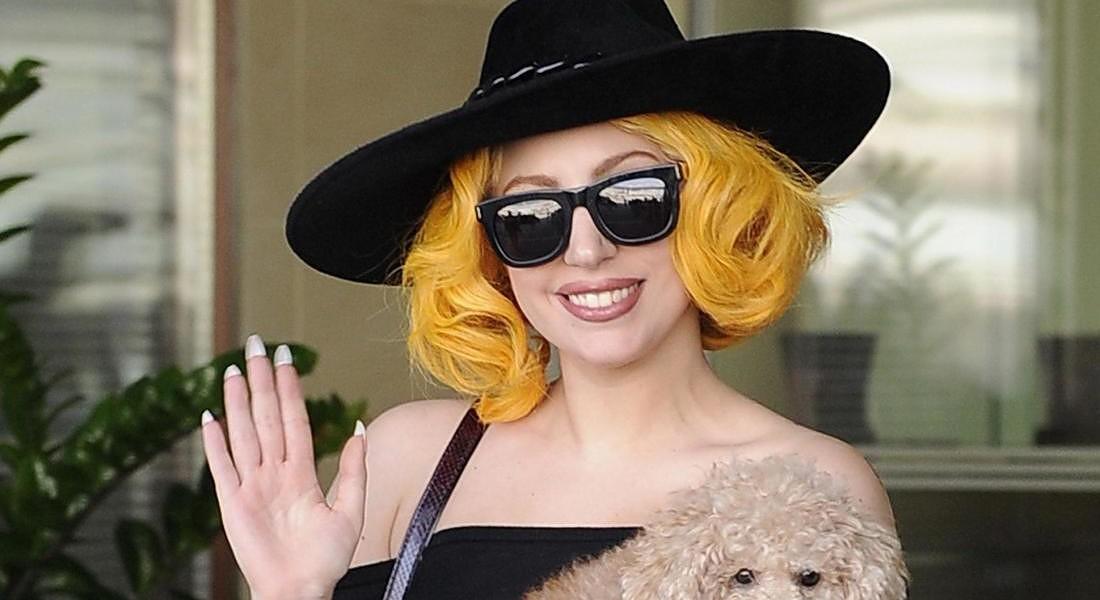 Lady Gaga, sparano al dog sitter per rapire i cani della pop star: l'uomo è in fin di vita