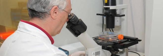 Scoperto un farmaco che blocca le metastasi tumorali