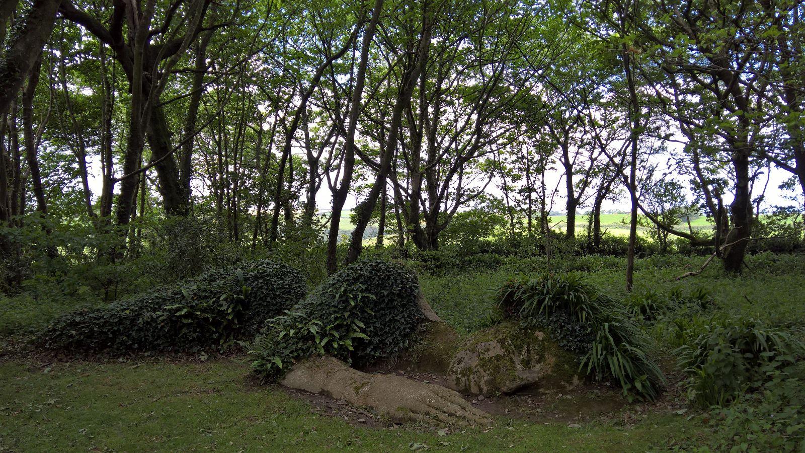Viaggio in Cornovaglia: perdersi nei Lost Gardens of Helingan