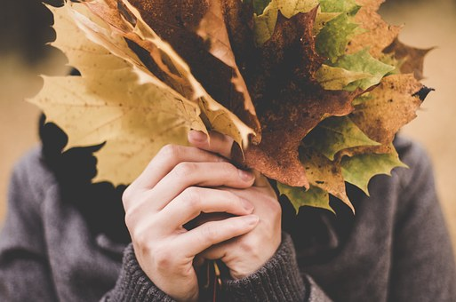 La mia playlist dell'autunno 2018