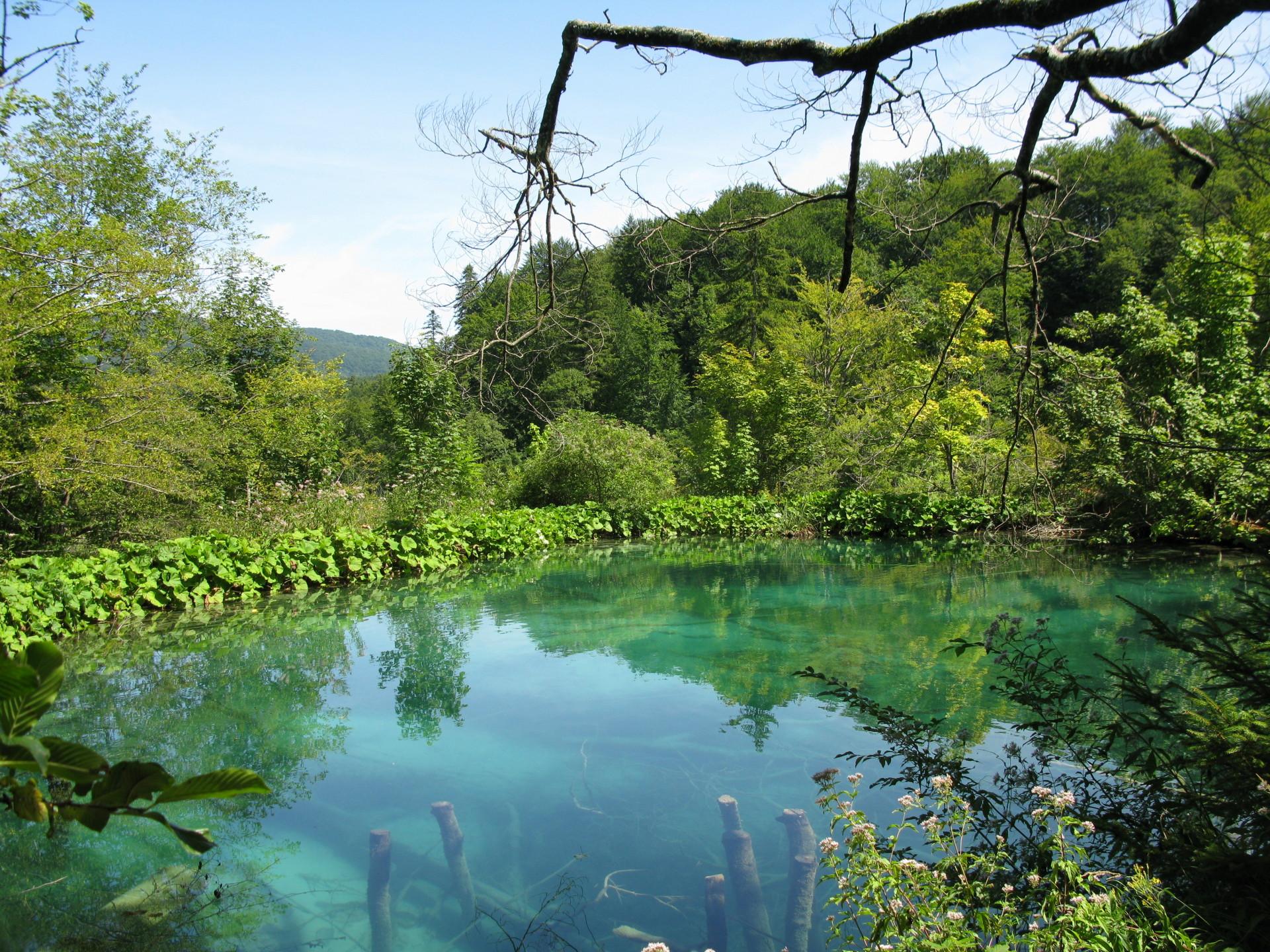 Viaggio a Zara: la magia dell'acqua ai laghi di Plitvice