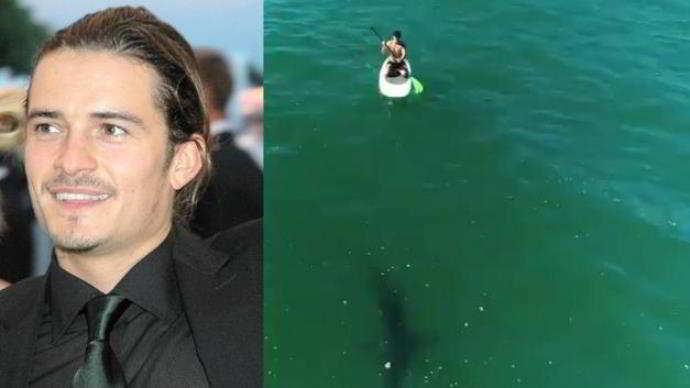 Orlando Bloom, brivido: faccia a faccia con uno squalo bianco
