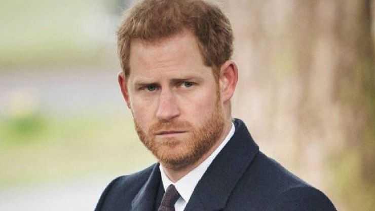 L'ultimo sfogo del principe Harry a Londra era come vivere in uno zoo