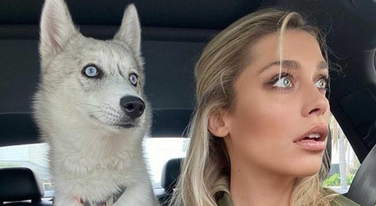 Ludovica Frasca condivide un video con il suo cane Husky conquista i social
