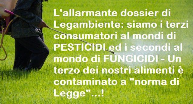 """L'allarmante dossier di Legambiente: siamo i terzi consumatori al mondi di PESTICIDI ed i secondi al mondo di FUNGICIDI - Un terzo dei nostri alimenti è contaminato a """"norma di Legge""""...!"""