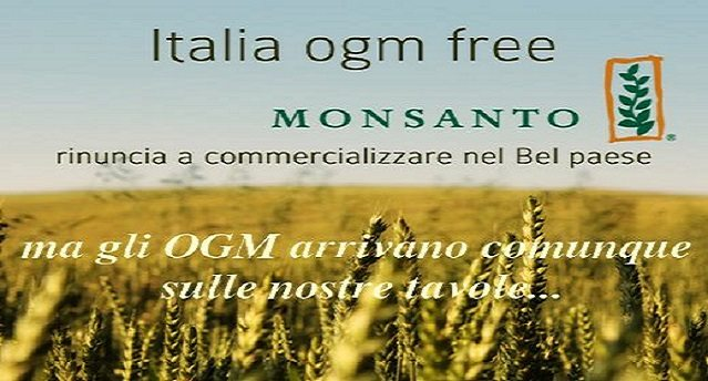 Attenzione - Mangi OGM senza saperlo - in Italia divieto di coltivazione ma ammessa l'importazione - Ecco la lista di alimenti e additivi che contengono o possono contenere Ogm e che tutti i giorni ci ritroviamo a tavola!