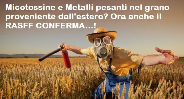 L'Allarme di Granosalus per Micotossine e Metalli pesanti nel grano proveniente dall'estero? Ora anche il RASFF (sistema di controllo della Commissione Europea e dell'EFSA - Autorità per la sicurezza alimentare) CONFERMA...!