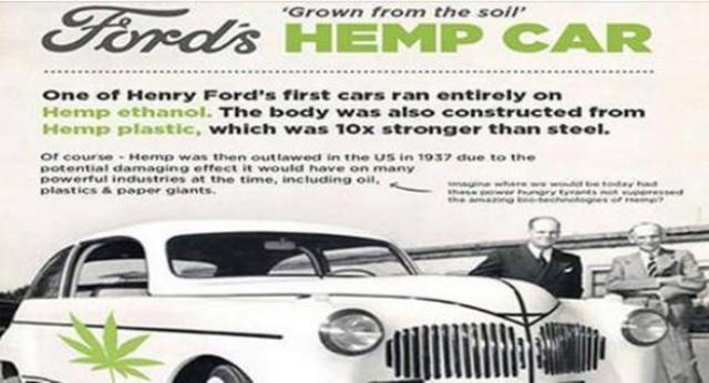 Correva l'anno 1941. Henry Ford realizzò un'auto interamente realizzata in canapa e alimentata ad olio di canapa. Economica, resistente ed ecologica. Ma poi le Lobby si resero conto che la Canapa per loro era un pericolo e...