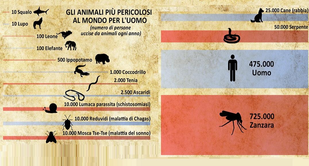 Non solo Malaria - Le zanzare sono gli animali più pericolosi al mondo!
