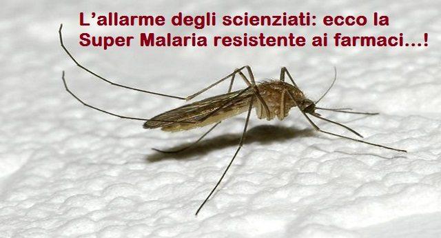 L'allarme degli scienziati: ecco la Super Malaria resistente ai farmaci...!