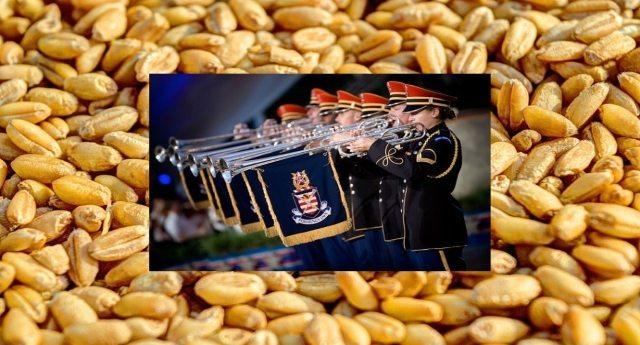 Il grano estero accolto con la fanfara dal Ministero della Salute, che ci nasconde che è imbottito di glifosato e porcherie del genere.