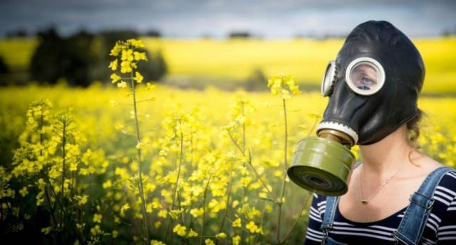 La Natura non la freghi: i parassiti si adattano sempre più in fretta agli OGM...!