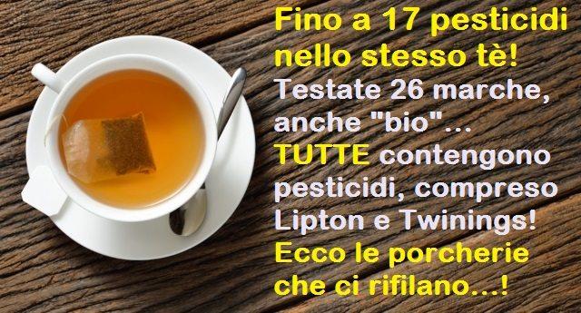 """Fino a 17 pesticidi nello stesso tè! Testate 26 marche, anche """"bio"""", TUTTE contengono pesticidi, compreso Lipton e Twinings! Ecco le porcherie che ci rifilano...!"""