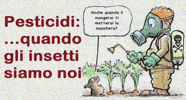 Pesticidi: quando gli insetti siamo noi !!