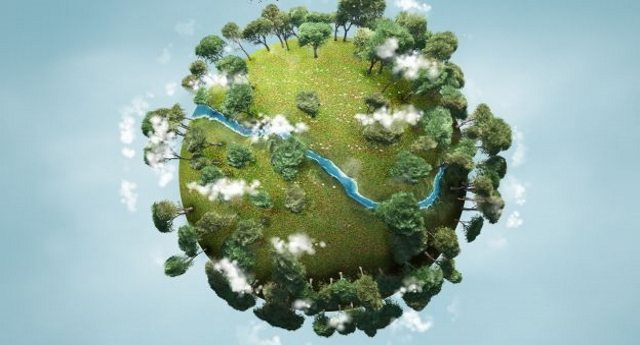 Come riconoscere i principali marchi ecologici e gli enti certificatori