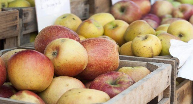 L'accusa di SlowFood - Buona parte delle mele che trovate oggi sui banchi del mercato sono dell'anno scorso!