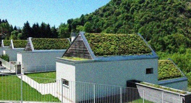 Con tetti verdi e giardini pensili la casa è più vivibile e risparmi il 30%