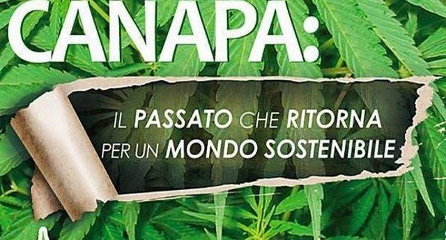 Bonifica terreni con la canapa, un'idea italiana!