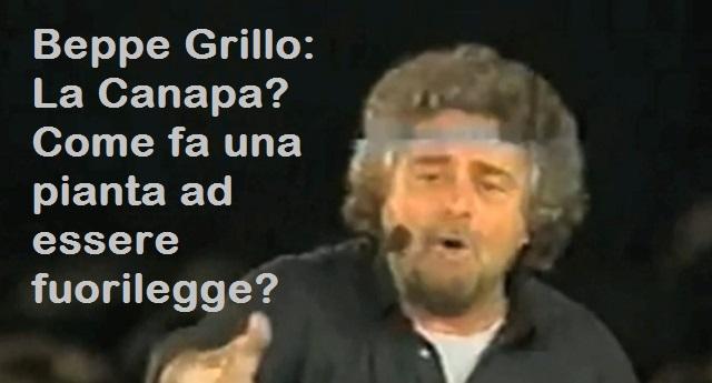 Beppe Grillo: La Canapa? Come fa una pianta ad essere fuorilegge?