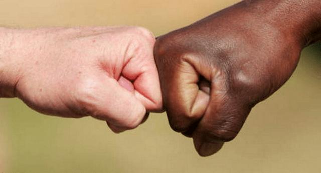 Il razzismo? Dipende dalla scarsa intelligenza. Più sei stupido, più sei razzista. Lo dice la scienza