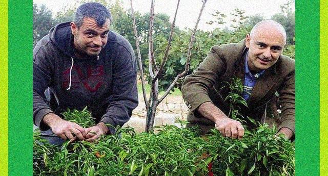 Angelo e Valerio, i contadini che stanno creando un mercato di semi antichi per combattere Ogm e Multinazionali