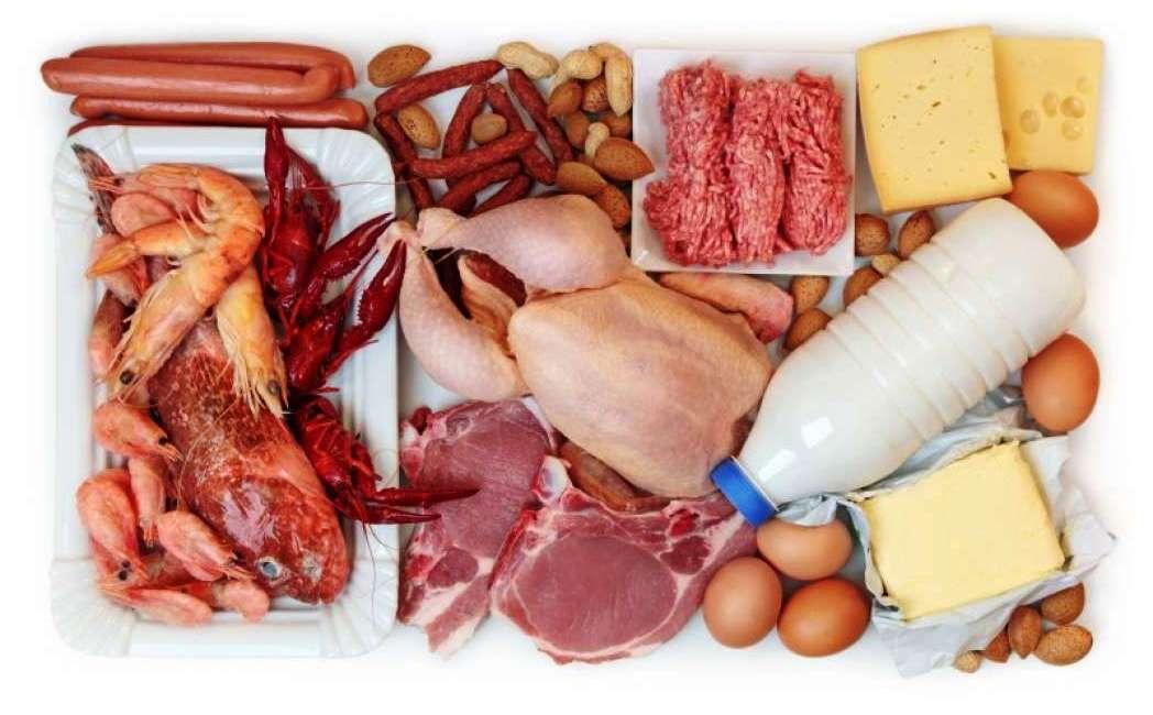 I problemi causati dalle diete ad elevato contenuto proteico.