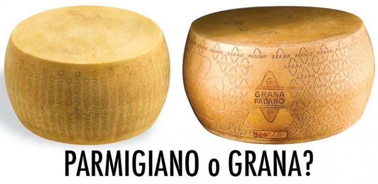 Eccellenze: che differenze ci sono tra Grana Padano e Parmigiano Reggiano?