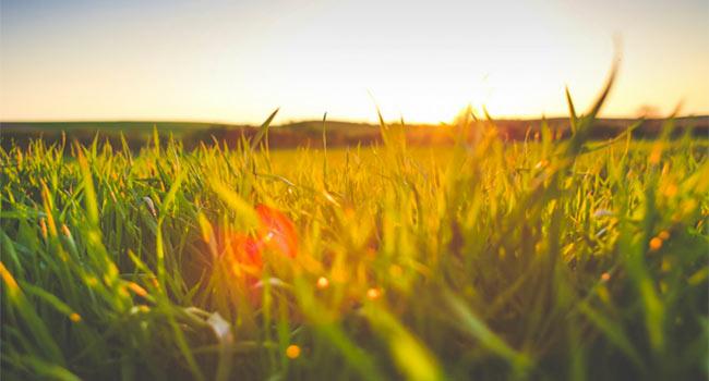 Trenta consigli pratici per il benessere psicofisico
